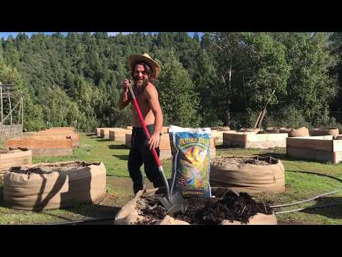 Mother Earth Groundswell & Soil Bae