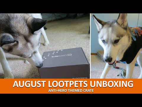 AUGUST LOOTPETS UNBOXING | August 2016 Anti-Hero Theme