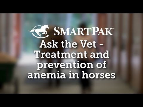 Ask the Vet - Treatment and prevention of anemia in horses