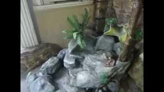 Estanque con cascada casera music jinni for Cascada casera para jardin