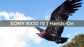 Sony RX10 IV | Hands-On