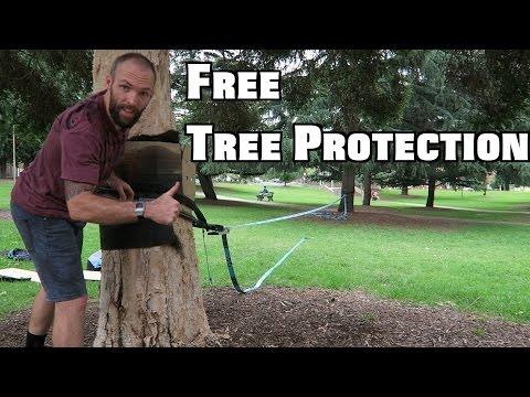 Free Tree Protectors - Slacklining Tips and Tricks