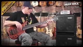 Warwick Sound Examples: The Thumb BO 5-String