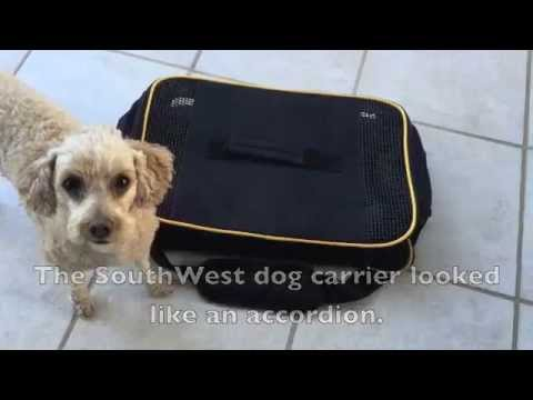 Dog Carrier for under the seat on Southwest Airline