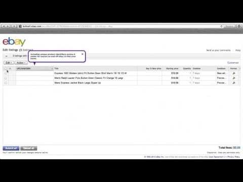 Bulk Edit eBay Listings 2012 from http://www.senkcity.com