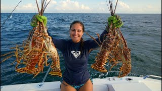Download STUNG by POISONOUS MAN O' WAR While Lobstering! CATCH and COOK Video