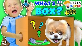 Chase's Corner: WHAT'S IN THE BOX? (#50 | DOH MUCH FUN Challenge)