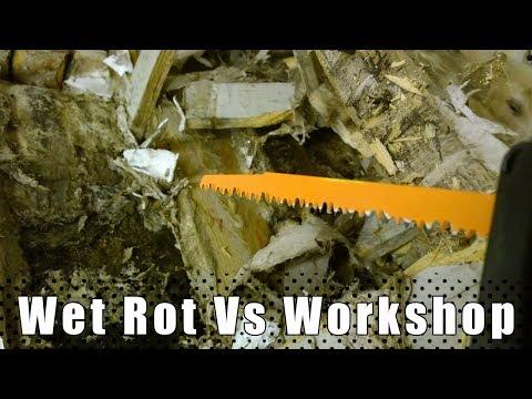 Wet Rot Vs Workshop