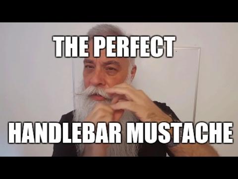 PERFECT HANDLEBAR MUSTACHE