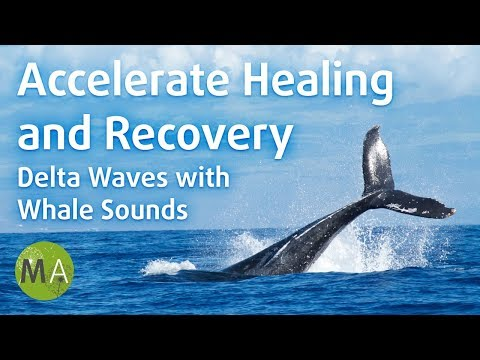 Accelerate Healing and Recovery, Delta Waves with Whale Sounds - Isochronic Tones