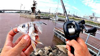 Download URBAN Fishing for RIVER MONSTERS!!! -Not what I Expected! Video
