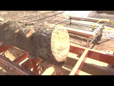 Woodmizer LT15 magic, ugly bent crooked log to beautiful square cant.