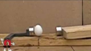 Magnet vs. Egg
