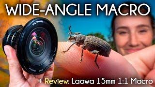 Wide Angle Macro and the Venus/LAOWA 15mm Macro Lens