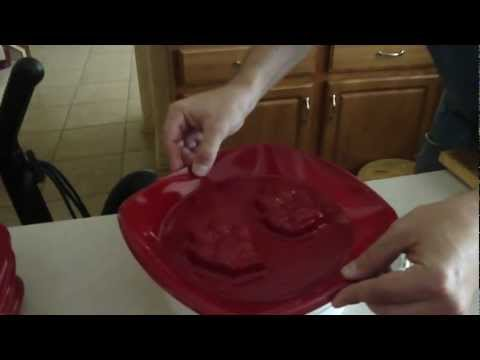 Making a mold to cast animal footprints