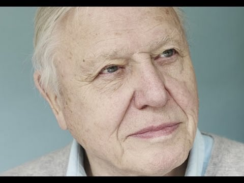 Sir David Attenborough: 'Climate change dangers worse than we thought'
