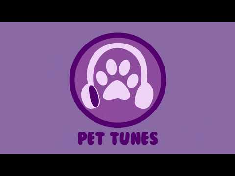 ANXIOUS DOG MUSIC! Soothe Your Dog and Calm Nerves with Relaxing Music! Calm Dogs and Help Sleep! 🐶