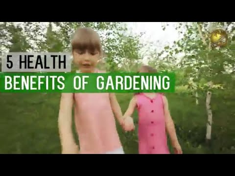 GARDENING: HEALTH BENEFITS as a Hobby - Go Green Stay Healthy! Start Planting Now