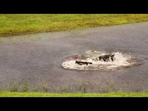 Huge ATV flips over underwater MUCH FUNNY