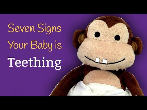 7 Signs Your Baby is Teething