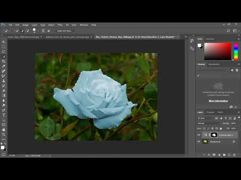 Photoshop Tutorial for Beginners - 14 - Color Replacement Part 2