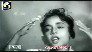 Ayyata Mey අයියාට මේ රජගේ (මුල් ගීතය) - Master Morrin & Baby Dorrin - 'Purusha Rathnaya' (1959)