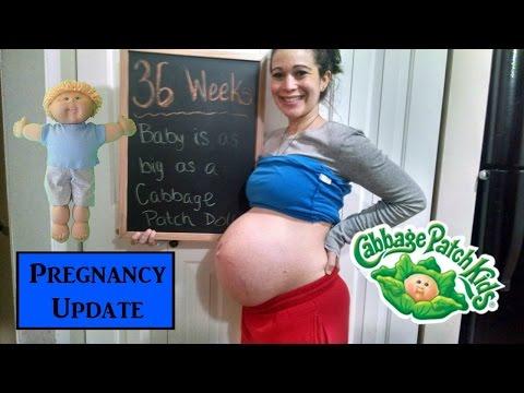 💙 36 WEEK PREGNANCY UPDATE! 🍼 | Strep B Test & Red Raspberry Leaf Tea 👣 | Tim and Missy
