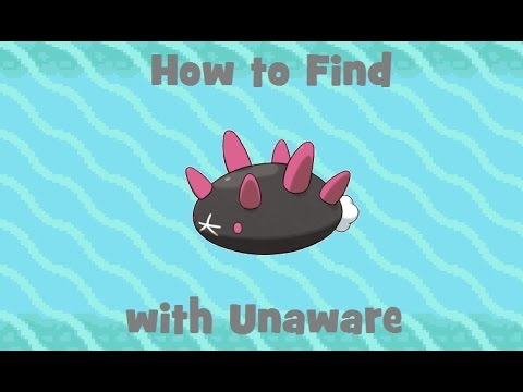 How to Find: Pyukumuku with Unaware