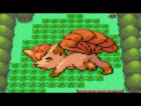 How to find find Vulpix in Pokemon Diamond and Pearl