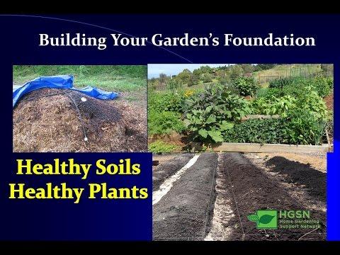 Healthy Soils-Healthy Plants- How To Improve Your Soil Fertility