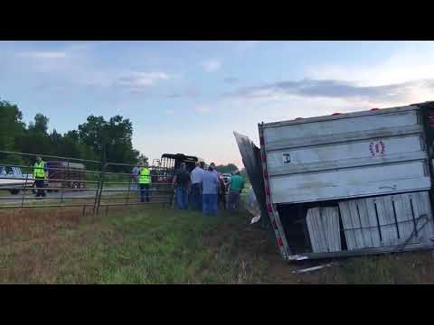 Overturned Cattle Trailer Shut Down I-65