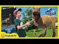 Jurassic World Alive Dinosaur Hunting Family Fun Adventure Game With Giant Life Size Dinosaurs