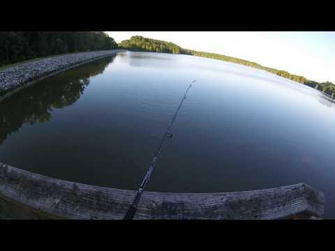Fishing & Kayaking Stumpy Lake