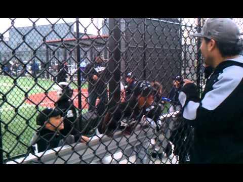 Financialchemo little league baseball team in Newark NJ, gotta give back ;-)