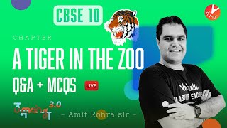 A Tiger in the Zoo 🐅 (Q&A + MCQ's)   CBSE 10 English - First Flight Chapter 3   NCERT Umang  Vedantu