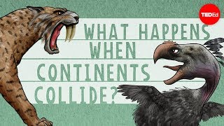 What happens when continents collide? - Juan D. Carrillo