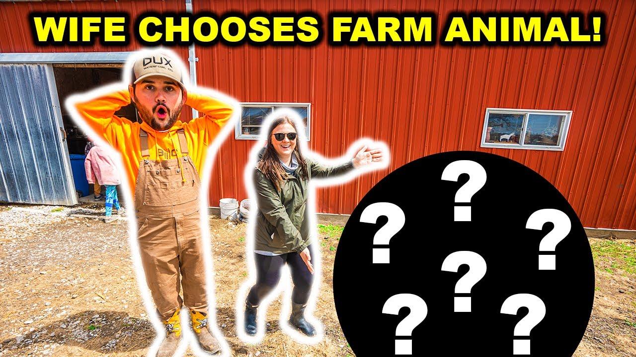 Letting My WIFE Choose My Next BACKYARD FARM Animal at the AUCTION!!! (Bad Idea)