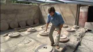Romae Historia - I CIBI ROMANI E LE FATTORIE DELL