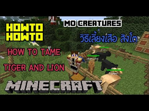 How to How to minecraft mo creatures วิธีเลี้ยงเสือสิงโต (How to tame tiger and lion)