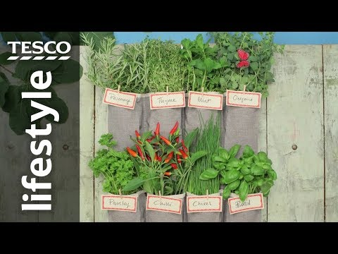 How to make a vertical garden using a shoe organiser | Tesco