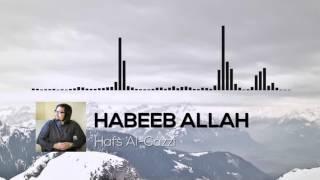 HABEEB ALLAH   BACKGROUND NASHEED (NO LYRICS)
