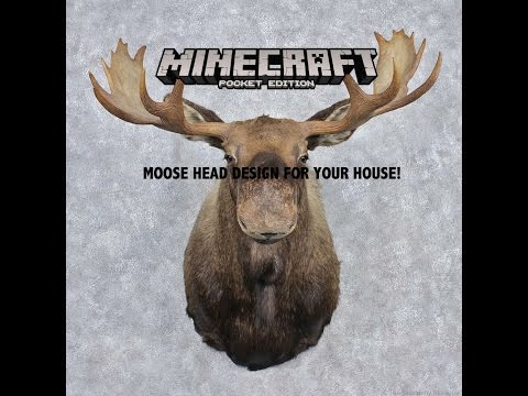 Minecraft PE I How to make a moose head on your wall!