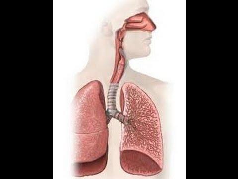 Postoperative pneumonia - Risk factors and Measures to decrease pneumonia