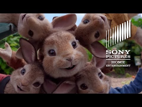 PETER RABBIT - Now on Digital
