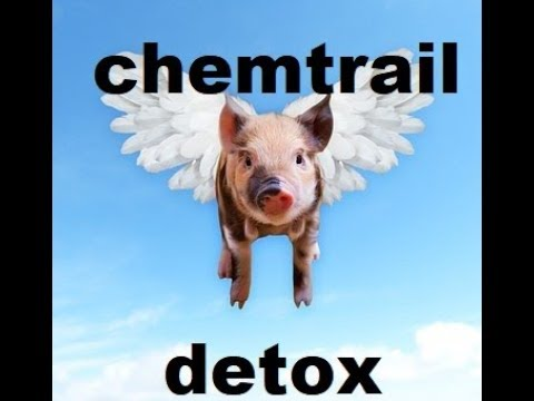 Chemtrail Detox? Clear Your Lungs With This Chemtrail Cough Treatment