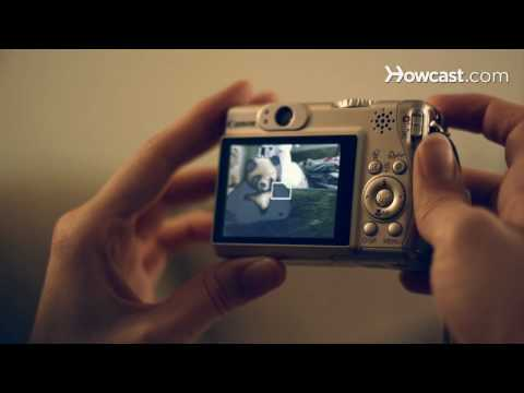 How to Use a Digital Camera