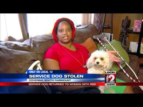 Service dog returned to woman with RSD