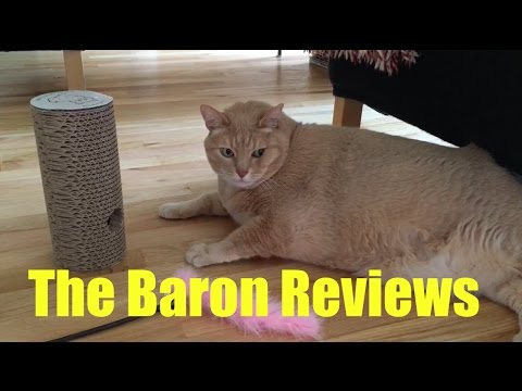 The Baron Reviews - Lalawow Cat Scratch Tube