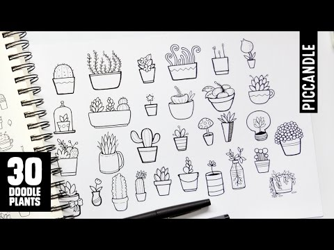 30 Plants to Doodle | Succulents, Cacti and more