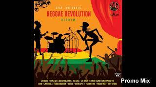 Reggae Riddim Jan 2019 Instamp3 Song Downloader